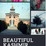 The Kashmir Valley in Pictures: Download Your Free Look Book